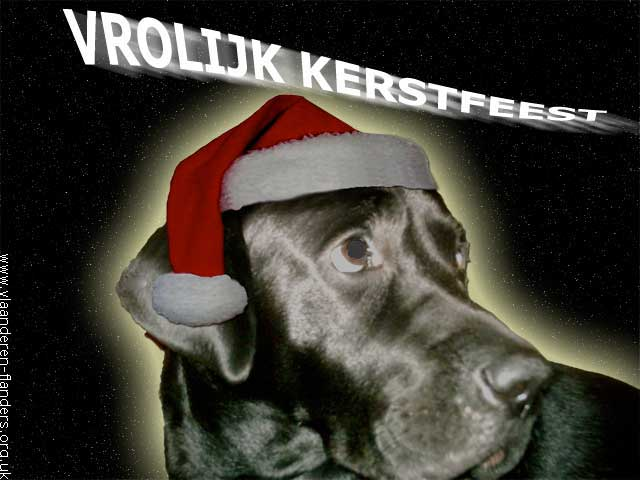 Lucky Zalig Kerstfeest